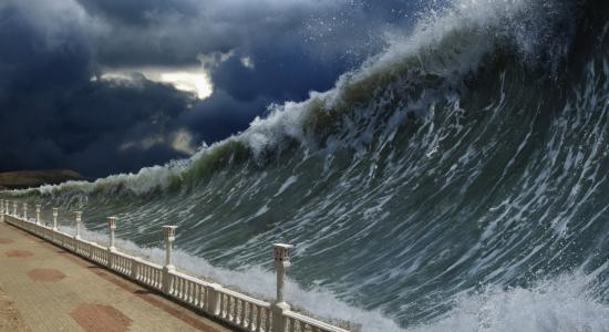 English Language Course - Tsunami Sent Species on a Transoceanic Trip